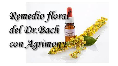 remedio floral con agrimony