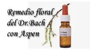 remedio floral aspen