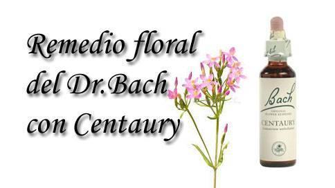 remedio floral con centaury