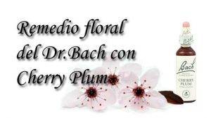 remedio floral con cherry plum