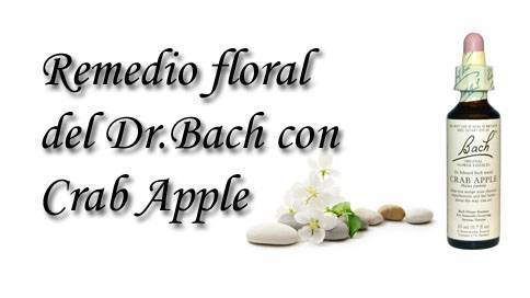 remedio floral con apple