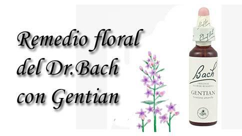 remedio floral con gentian