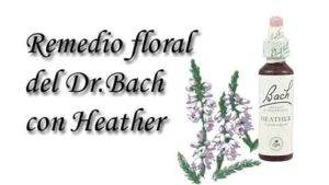 remedio floral con heather