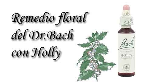 remedio floral con holly