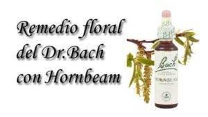 remedio floral con hornbeam