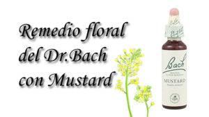 remedio floral con mustard