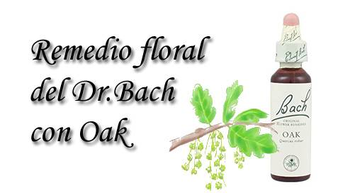remedio floral con oak