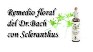 remedio floral con scleranthus