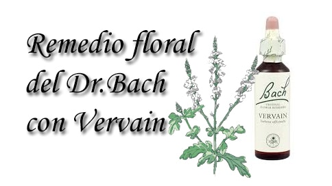 remedio floral con vervain